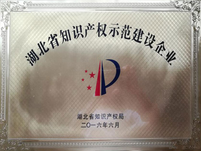 湖北省知识产权示范建设企业