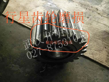广西百色丰林人造板有限公司